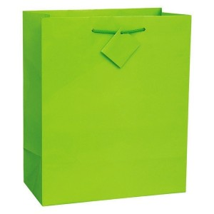 Kiwi Gift Bag