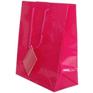 Magenta Gift Bag